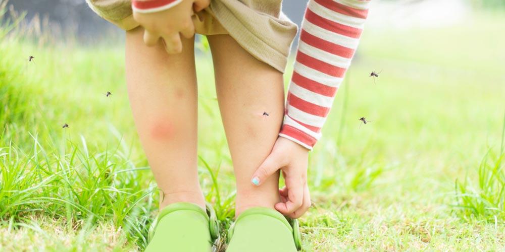 Sivri sineklerden koruyan giysiler