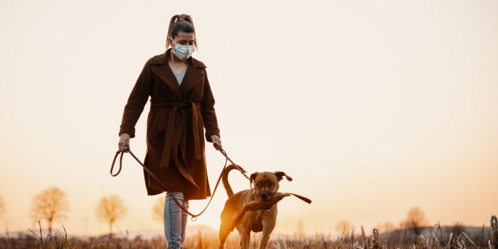Koronavirüste Köpekleri Yürüyüşe Çıkarmak